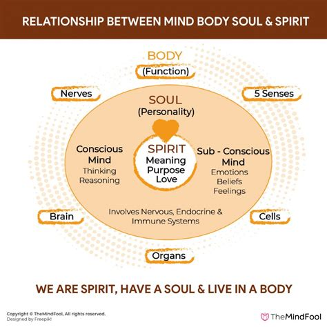 The Mind Body Relationship