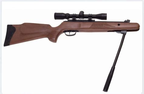 The Most Powerful Air Rifle On The Market