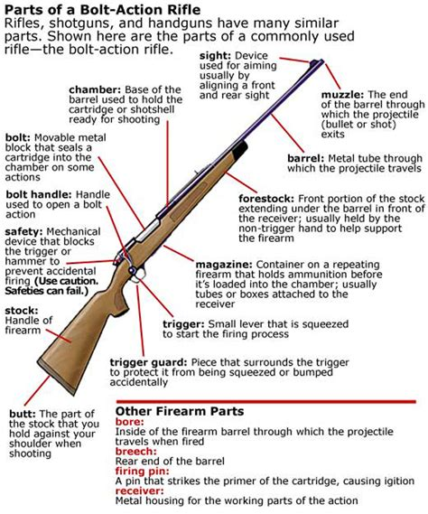 The Parts Of A Rifle Bolt Action