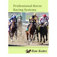 The best winning horse racing system experience