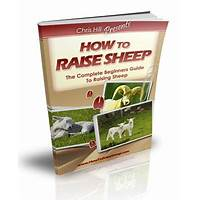 The complete beginners guide to raising sheep online coupon