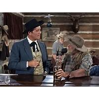 Buying the cpa affiliate bonanza marketing system