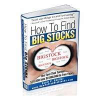 The how to find big stocks newsletter secret codes