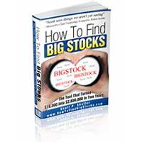 The how to find big stocks newsletter offer