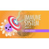 The immunity course online tutorial