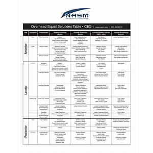 The muscle imbalance solution functional training coach com experience