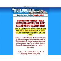 The niche blog pack 299 niche plr wordpress blogs with content offer