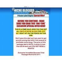 The niche blog pack 299 niche plr wordpress blogs with content scam