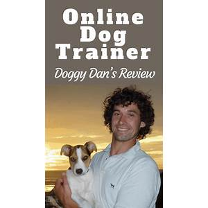 The online dog trainer from doggy dan discounts