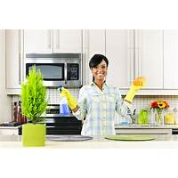 The ultimate guide of speed cleaning secrets 65 % commission bonus