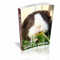 The ultimate guinea pig handbook that works