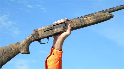 Top 5 Semi Auto Hunting Shotguns And 22 Ammo Box