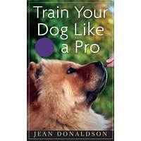 Train your puppy like a pro inexpensive