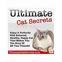 Free tutorial ultimate cat secrets