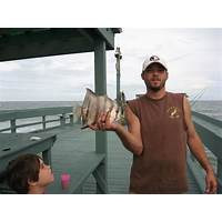 Ultimate secrets to saltwater fish and invertebrates coupon code
