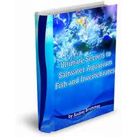 Ultimate secrets to saltwater fish and invertebrates programs