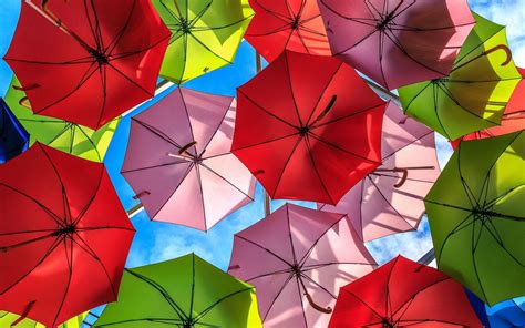 Umbrella Wallpaper HD Wallpapers Download Free Images Wallpaper [1000image.com]