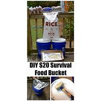 Urban survival:survive any disaster without leaving home cheap