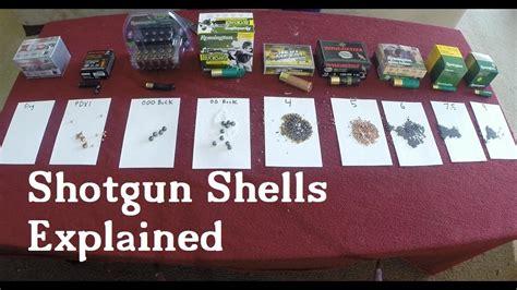 Use Of 20 Shotgun Shells Explained