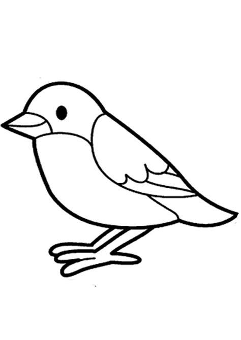 Vögel Ausmalbilder Zum Drucken