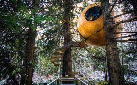 Vancouver Island Tree House Hotel Hotel Near Me Best Hotel Near Me [hotel-italia.us]