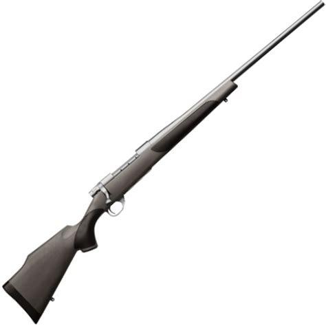 Vanguard Rifle Review