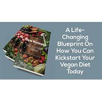 Vegan masterplan guide to a healthy lifestyle does it work?