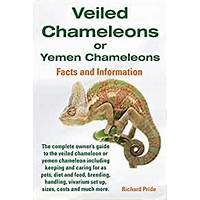 Compare veiled chameleons or yemen chameleons facts and information guide