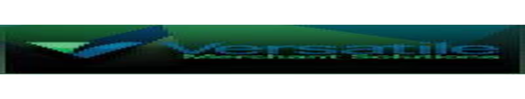 Versatile Merchant Solutions Llc