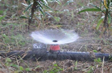 Vortex Irrigation