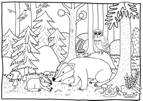 Wald Malvorlage