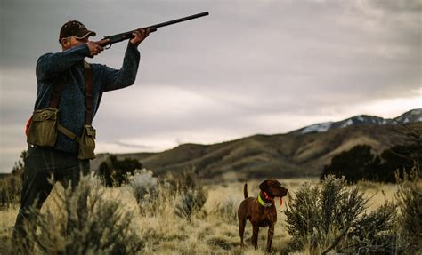 What Can You Hunt With A Single Shot Shotgun