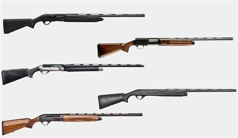 What Is The Best Semi Auto Shotgun For Hunting