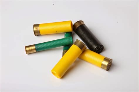 What Is The Best Shotgun Shell