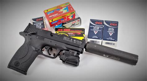 What Is The Best Varmint Rifle Ammo