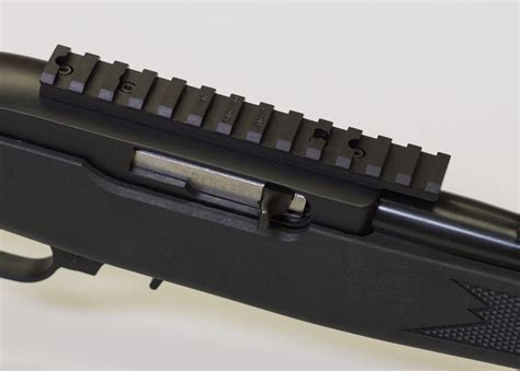 What Picatinny Rail For 10 22