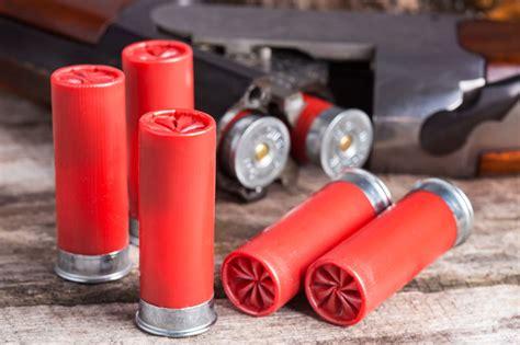 What Shotgun Shells Do You Use For Skeet Shooting