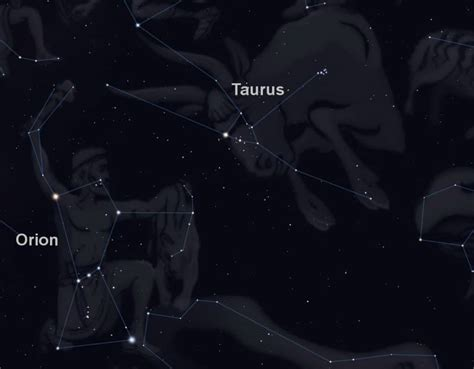 Taurus-Question When Can Taurus The Bu Llbe Seen In The Year.