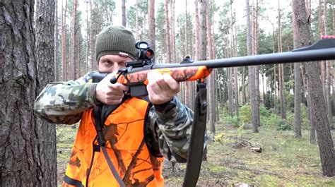 Where To Shoot A Wild Boar With A Rifle