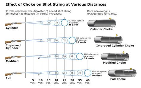 Which Shotgun Choke Is Best For Duck Hunting