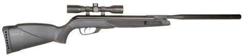 Wildcat Whisper Air Rifle