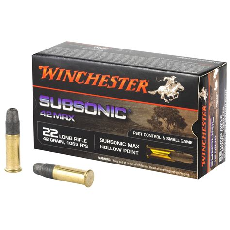 Winchester 22 Ammo Problems