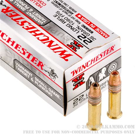 Winchester Bulk 22lr Ammo