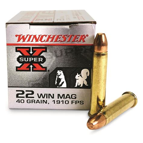Winchester Super X 22 Magnum Ammo Review
