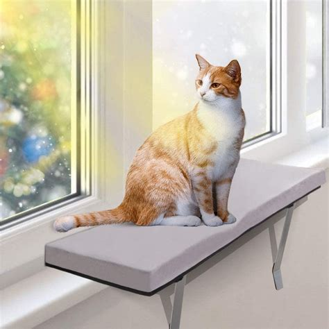 Window sill for cats Image