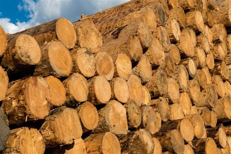 Woodworking resources Image