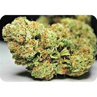 Your complete drug free treatments for sinusitis offer