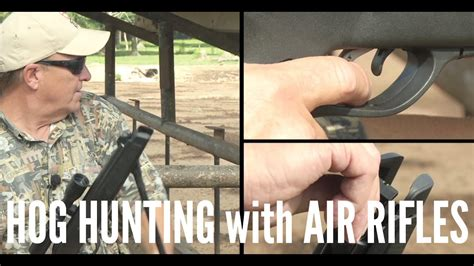 Youtube Hog Hunting With Air Rifle